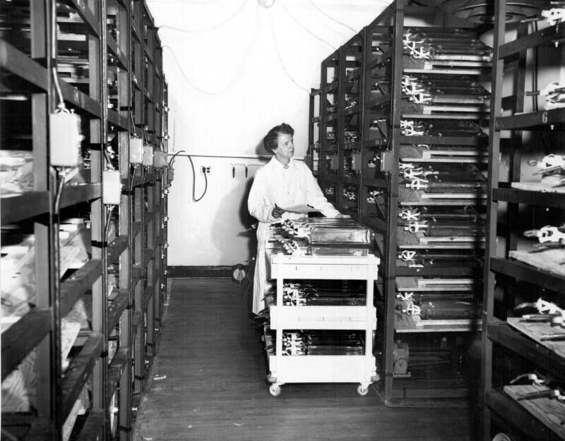 Leone N. Farrell, in a lab coat, pushes a cart between tall metal shelves. Contents of cart and shelves are unidentifiable.