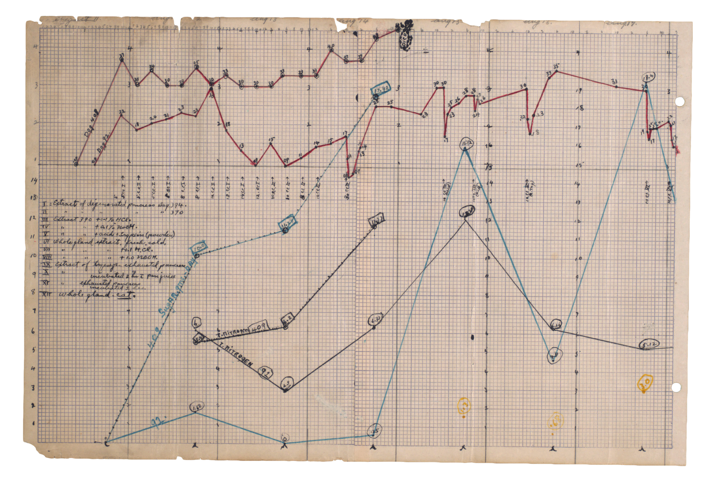 A scanned image of plotted line graphs illustrating dramatic reductions in blood sugar.