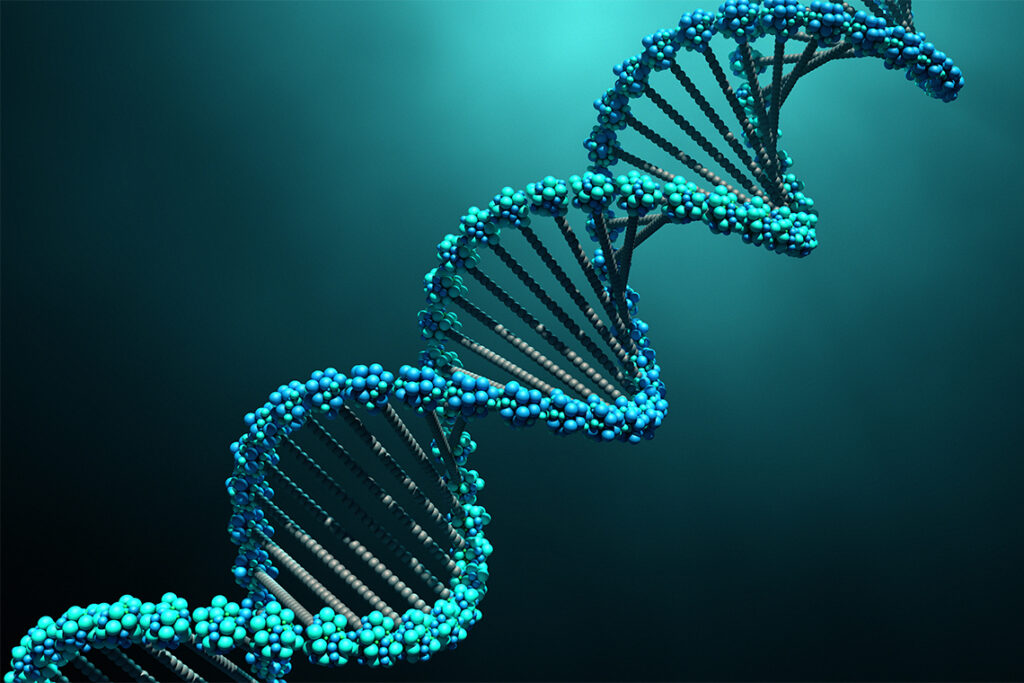 An illustration of DNA: a shape like a ladder twisted into a spiral, with the rails and rungs made up of tiny spheres.
