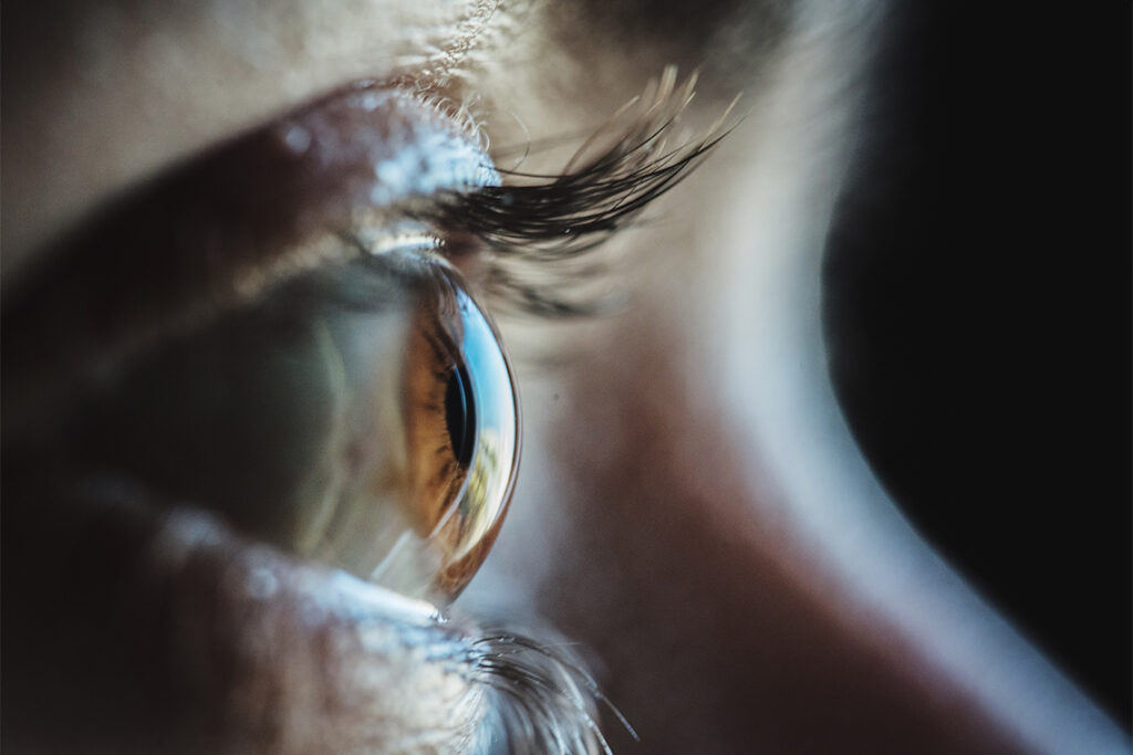 A closeup of a human eye from the side, showing eyelashes, eyelid and eyeball.